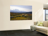 Mount Mckinley, Denali National Park, Mckinley River From Near Wonder Lake, Alaska, USA Wall Mural by Bernard Friel
