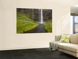 People on Trail Behind Seljalandsfoss Waterfall, Iceland Wall Mural by Don Grall