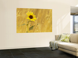 Prairie Sunflower at Palouse Falls State Park, Washington, USA Wall Mural by Chuck Haney