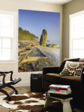 Shoreline and Seastacks, Ruby Beach, Olympic National Park, Washington, USA Wall Mural by Jamie & Judy Wild