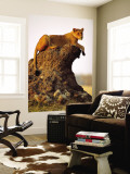Lioness (Panthera Leo) Watching Surroundings from Termite Mound Wall Mural by Andrew Parkinson