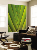 Detail of Palm Leaf Wall Mural by Guylain Doyle