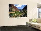 Looking Downriver From Nankoweap Canyon, Grand Canyon National Park, Arizona, USA Wall Mural by Bernard Friel