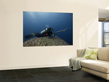 Diving With Spear Gun, Wolf Island, Galapagos Islands, Ecuador Wall Mural by Pete Oxford