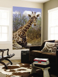 Giraffe Lying Down, Loisaba Wilderness, Laikipia Plateau, Kenya Wall Mural by Alison Jones