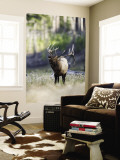 Elk in the Rut and Bugling, Yellowstone National Park, Wyoming, USA Wall Mural by Joe & Mary Ann McDonald