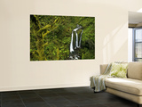 Triple Falls in the Mount Hood National Forest, Oregon, USA Wall Mural by Chuck Haney