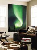 Aurora Borealis, Fairbanks, Alaska, USA Wall Mural by Julie Eggers
