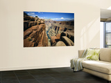 Toroweap Overlook a Panorama of the Canyon From Rim To River, Grand Canyon National Park, AZ Wall Mural by Bernard Friel