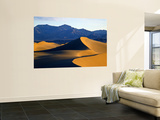 Sand Dunes in Mesquite Flat, Death Valley National Park, California, USA Wall Mural by Bernard Friel