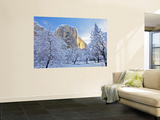 Sunrise Light Hits El Capitan Through Snowy Trees in Yosemite National Park, California, USA Wall Mural by Chuck Haney