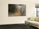 Mammoth Hot Springs, Yellowstone National Park, Wyoming, USA Wall Mural by Pete Oxford