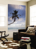 Bavaro Beach Palms at Dawn, Bavaro, Punta Cana Region, Dominican Republic Wall Mural by Walter Bibikow