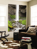 Latourell Falls and Latourell Creek, Columbia River Gorge, Oregon, USA Wall Mural by Jamie & Judy Wild