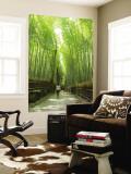 Bamboo Forest, Arashiyama Wall Mural by Greg Elms