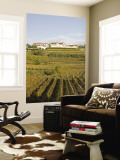 Vineyards in Goriska Brdy Wine Region Wall Mural by Richard Nebesky