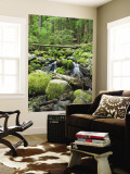 Mountain Stream in Old Growth Forest at Sol Duc, Olympic National Park, Washington, USA Wall Mural by Rob Tilley