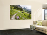 Highline Trail To Granite Park Chalet, Glacier National Park, Montana, USA Wall Mural by Jamie & Judy Wild