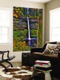 South Falls at Silver Falls State Park, Oregon, USA Veggmaleri av Joe Restuccia III