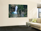 Waterfall on Falls Creek in Lewis and Clark National Forest, Montana, USA Wall Mural by Chuck Haney