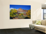 The Castle Along the Fremont River, Capitol Reef National Park, Utah, USA Wall Mural by Bernard Friel