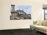 Domes and Minarets of Sultan Ahmet's Blue Mosque in Sultanahmet Wall Mural by Tim Makins