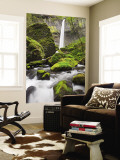 Elowah Falls and Mccord Creek, Columbia River Gorge, Oregon, USA Wall Mural by Jamie & Judy Wild