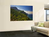 Na Pali Coast, as Seen from the Kalalau Trail Wall Mural by Merten Snijders