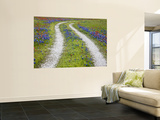 Tracks Leading Through a Wildflower Field, Texas, USA Wall Mural by Julie Eggers
