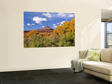 North Six Shooter Peak Framed With Yellow Fall Cottonwoods, Utah, USA Wall Mural by Bernard Friel