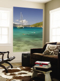 Snorkelers in Idyllic Cove, Norman Island, Bvi Wall Mural by Trish Drury
