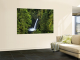 Metlako Falls Along Eagle Creek in the Mount Hood National Forest, Oregon, USA Wall Mural by Chuck Haney