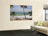 Playa Preciosa Beach, Abreu, North Coast, Dominican Republic Wall Mural by Walter Bibikow