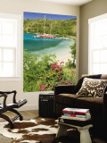Snorkelers in Idyllic Pirates Bight Cove, Bight, British Virgin Islands Wall Mural by Trish Drury