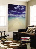 Beach in Palau Wall Mural by Nik Wheeler