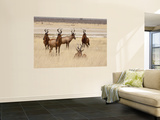 Red Hartebeest, Etosha National Park, Namibia, Africa Wall Mural by Wendy Kaveney