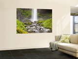 Latourell Falls, Columbia River Gorge, Oregon, USA Wall Mural by Jamie & Judy Wild