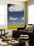 Canola Fields and Clouds in the Canadian Prairies Wall Mural by Todd Lawson