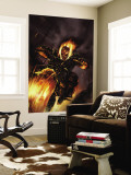 Ghost Rider 20 Cover: Ghost Rider Fighting Wall Mural
