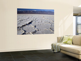 Salt Plates with Panamint Range in Distance, Death Valley, Californi Wall Mural by Witold Skrypczak