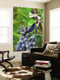 Vineyard Operated By Dynasty Winery Near Jixian, Tianjin Province, China Wall Mural by Janis Miglavs