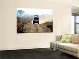 Safari Vehicle Kicking Up Dust Wall Mural by Mark Daffey