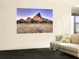 Landscape of Padar Island, Komodo National Park, Indonesia Wall Mural by  Jones-Shimlock