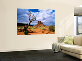 Monument Valley Wall Mural by Douglas Steakley