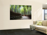 Bamboo Forest Walkway, Arashiyama District Wall Mural by Rachel Lewis