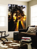 Bald Cypress Trees Silhouetted at Sunset at Lake Martin Wall Mural by John Elk III