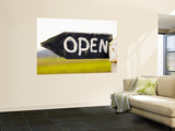 Open Sign Detail Wall Mural by Oliver Strewe