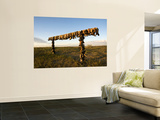 Boot Rack Wall Mural by Mark Newman