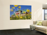 Red House Seen Through Meadow of Yellow Buttercup Flowers Wall Mural by Holger Leue