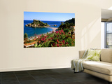 Populated Island Coastline, Isole Bella, Sicily, Italy Wall Mural by John Elk III